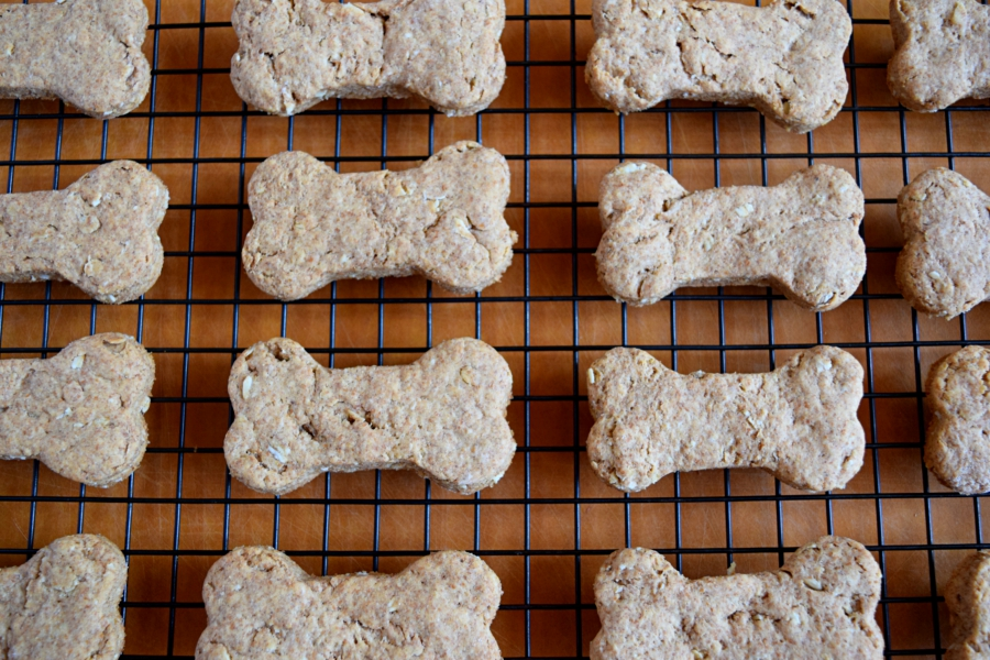 5-Ingredient Dog Treats