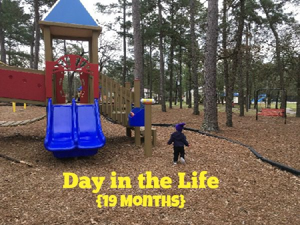 Day in the life {19 months}
